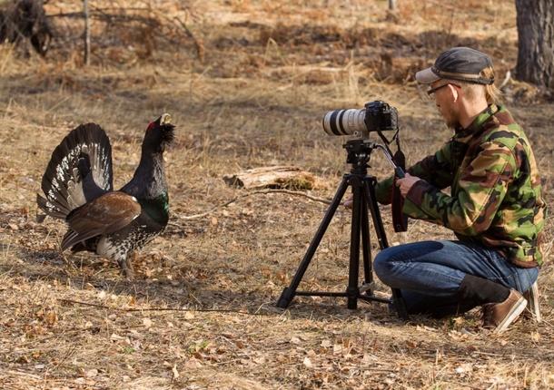 Челябинцев приглашают поучаствовать во всемирной переписи птиц